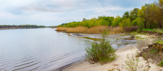 Riverbank with sand edge and forest. River Don, Russia, Rostov-on-Don region