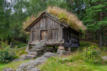 Old traditional Norwegian storehouse with green grass on the roof at picturesque forest background, Kristiansand, Norway