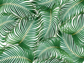 mix leaf of palm tree background
