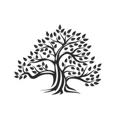 Organic natural and healthy olive tree silhouette logo isolated on white background.