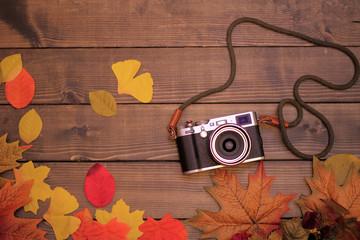 カメラ 秋 シンプル 木目 背景 落ち葉