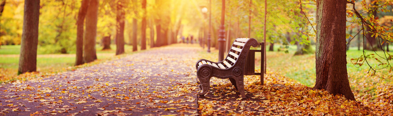 Bench in autumn with lots of sunshine in the corner