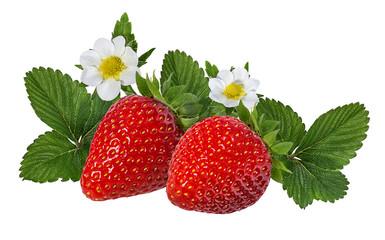 Leinwandbilder - Strawberry with flower isolated on white background