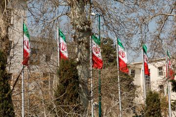 Islamic Republic of Iran. Iranian Flags.