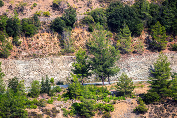 Mountain slopes with trees, terrases and roads in the Troodos region of Cyprus in summer