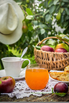 Eating apples juice pie coffee tea on a picnic in nature in a rustic garden on a sunny afternoon, the concept of outdoor recreation, travel and food