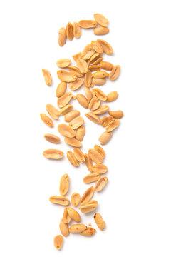 Roasted peanuts falling isolated on white background.