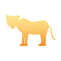 silhouette female lion wild animal