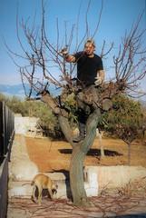 Almond Orchard Farmer