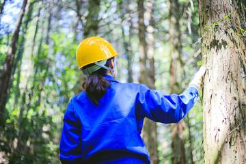 木の点検をする作業服の女性