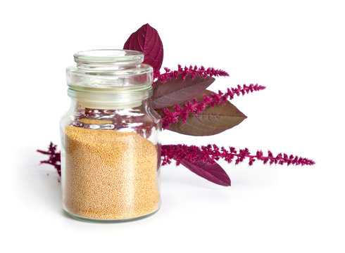 Seed of Amaranthus, collectively known as amaranth. Isolated