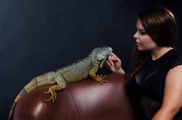 perfect sensual girl and big green iguana in the studio