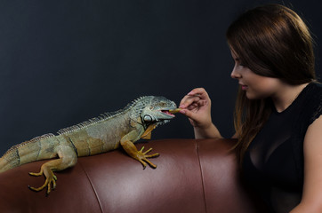beautiful girl and big green iguana in the studio