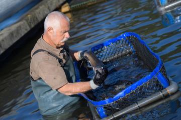 senior fish farm worker