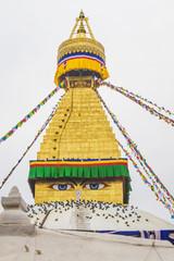 boudhanath Stupa with Prayer Flags and Pigeons in Kathmandu Nepa