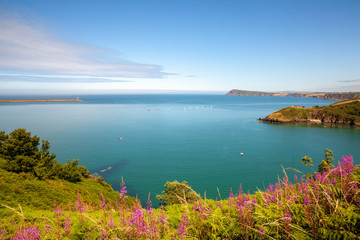 Aluminium Prints Sea Wales Coast Path Fishguard Coastline Landscape Nature Travel UK