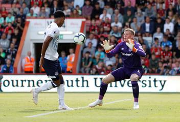Premier League - AFC Bournemouth v Everton