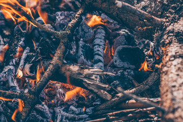 Burning sticks and branches