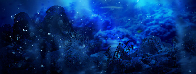 Depth of sea water, the bottom of the sea, the rays of the sun through the water, the underwater world, the background