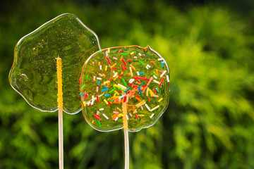 two colored sugar candy on sticks on a background of greenery, the concept of happiness and celebration, a copy space
