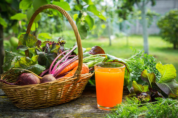 fresh vegetable beetroot onion carrots in a wicker basket and carrot juice in a glass cup on a wooden background in the garden, concept of organic organic gardening Wall mural