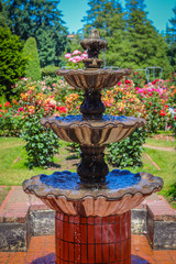 Outdoor Water Fountain Rose Garden Central Park