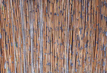 Close up bamboo fence background