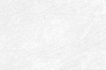 Light gray skin texture, genuine or faux white leather background, closeup.