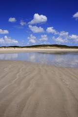 Spirits bay beach, Piwhane, New Zealand