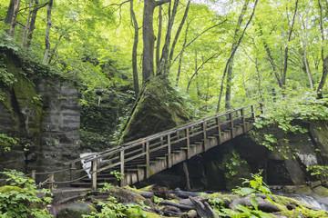 自然の渓谷