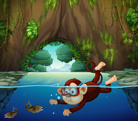 A monkey diving in the river