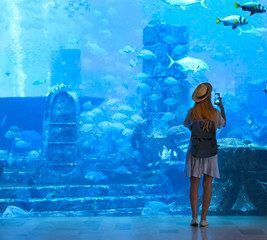 Sillouette of the woman taking picture in large aquarium