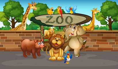 Happy animals in the zoo