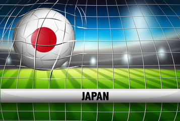 A Japan soccer ball at goal