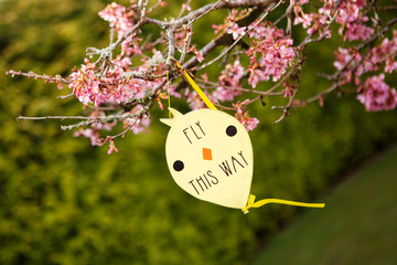 Fly this way sign, Easter egg hunt sign