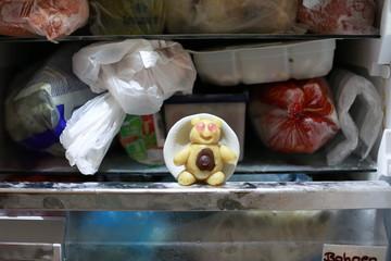 Wächter im Kühlschrank
