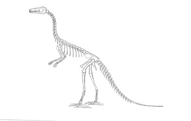 Illustration of dinosaur