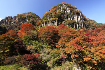 色づいた森の上にそびえる岩石タワー