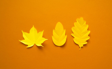 Autumn leaves made from paper orange background