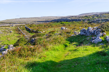 Hiking trail with Burren mountains in background