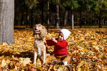 Cute, happy, white boy in red shirt smiling and playing with dog among yellow leaves. Little child having fun in autumn park. Concept of friendship between kids and pets, happy family