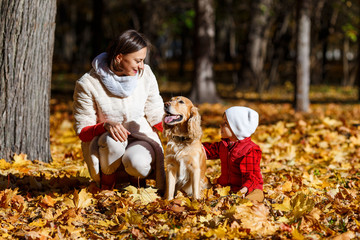 Cute, happy, white boy in red shirt smiling and playing with dog among yellow leaves. Little child having fun with his mom in autumn park. Concept of friendship between kids and pets, happy family