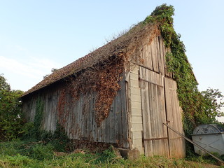 Traditional wooden barn, Ribeauville, Alsace, France