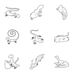 Lizard icons set. Outline set of 9 lizard vector icons for web isolated on white background