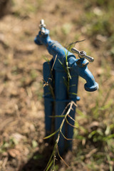Blue Faucet