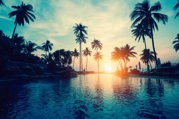 Amazing sunset on palm coast sea in subtropics.