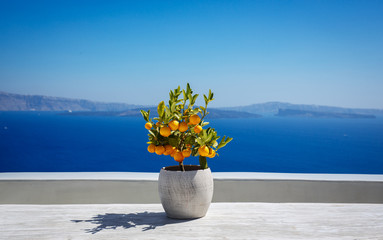 Fototapeta Beautiful santorini landscape obraz