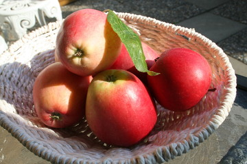 Swedish, mellow  James Grieve apples in white basket