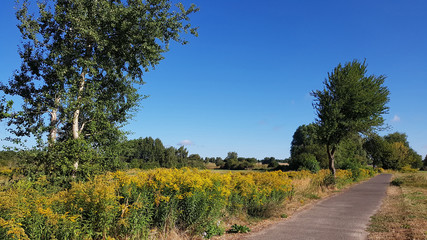 The Berlin Wall Trail in North of Berlin in Late summer
