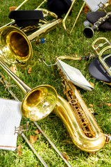 Musical instruments on the grass